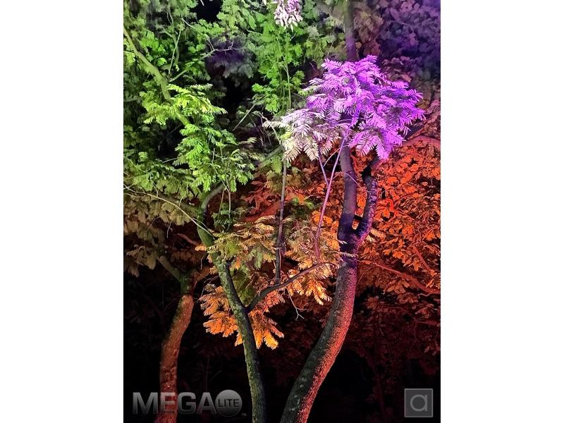 Megalite colores